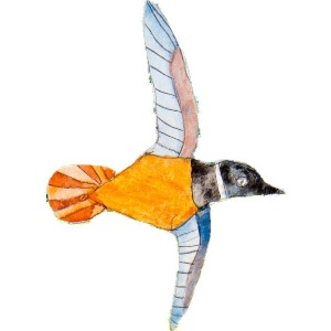 Specialist paper and print bird